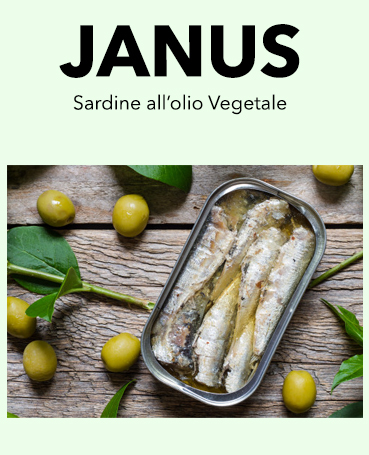 Janus by Asdomar