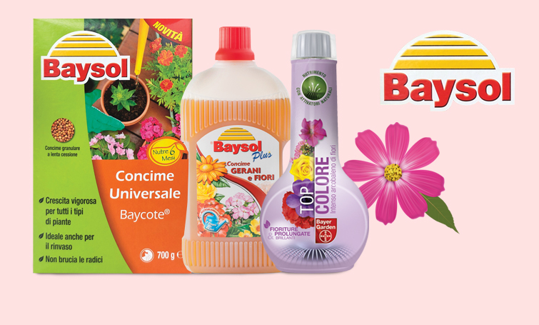 Concimi Bayer