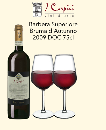 I Carpini Barbera Superiore
